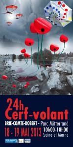 Affiche du festival de Brie Comte Robert 2013
