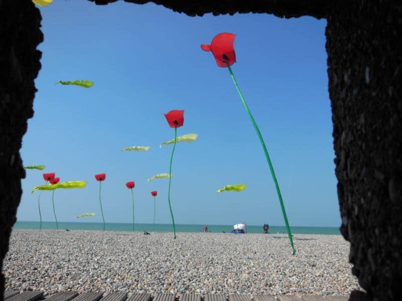 Festival of Dieppe 2014
