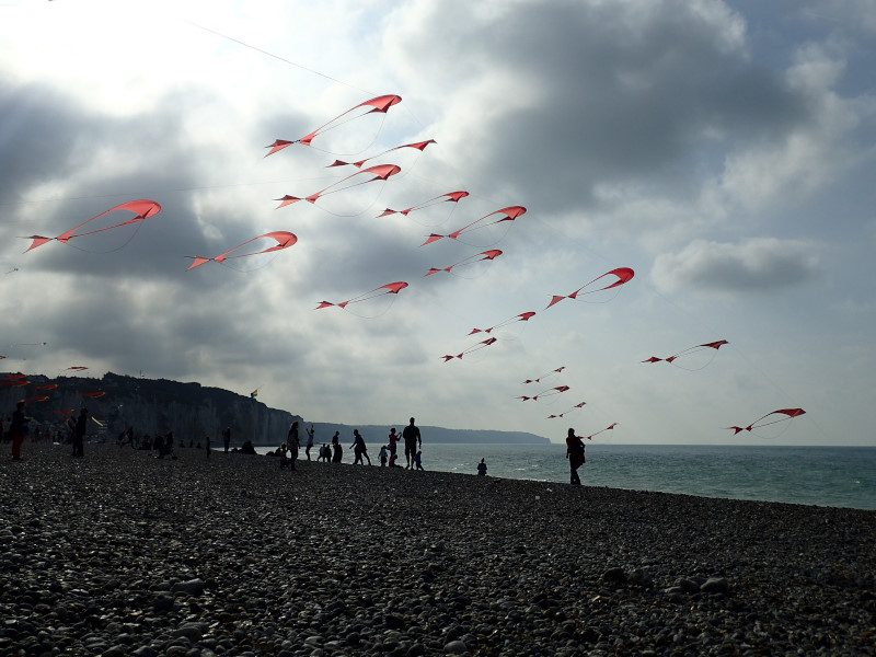 Dieppe Capital of the Kite 2016
