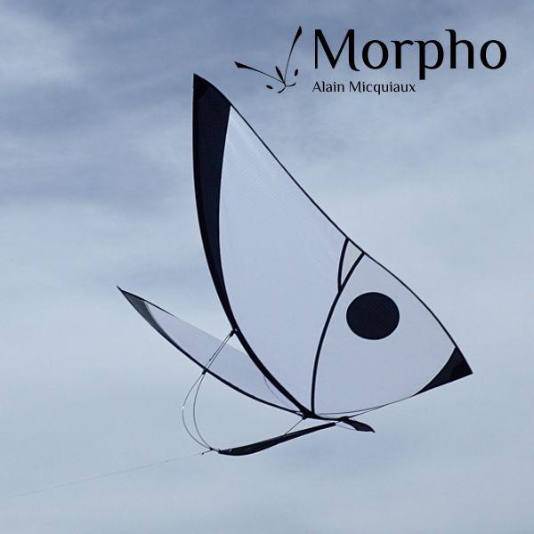 Cerf-volant papillon Morpho Blanc par Alain Micquiaux
