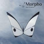 White Morpho kite