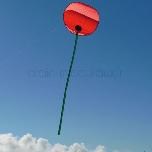 Cerf-volant Coquelicot Poppy