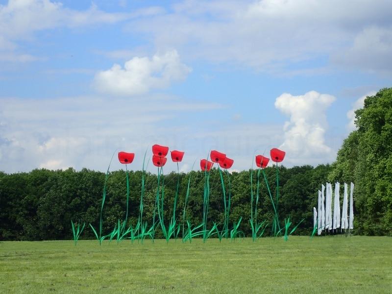 Kamen kite festival