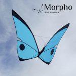 cerf-volant papillon Morpho Bleu