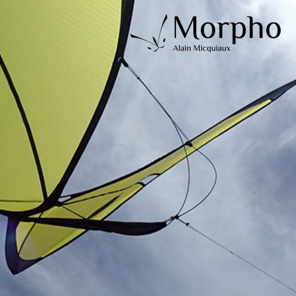 cerf-volant papillon Morpho Jaune
