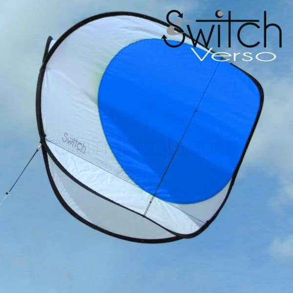 cerf-volant Switch verso bleu