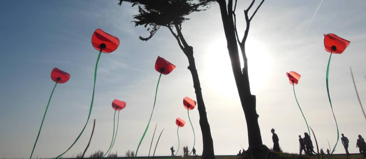 cerf-volant d'art par Alain Micquiaux
