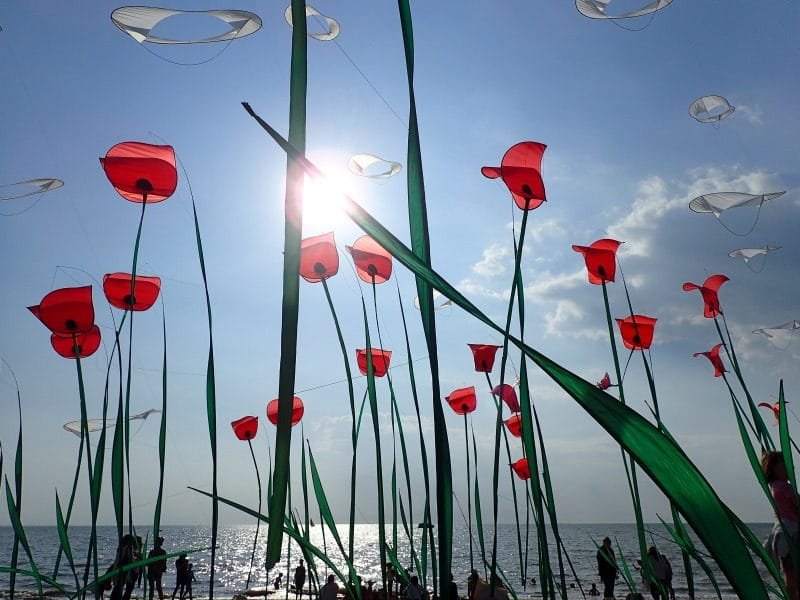 Kite and wind festival of Châtelaillon beach 2019
