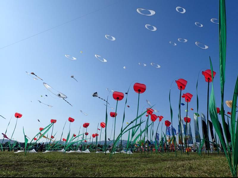 Festival de l'air de Fréjus