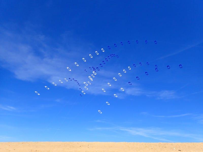Alain Micquiaux, cerf-volant d'art