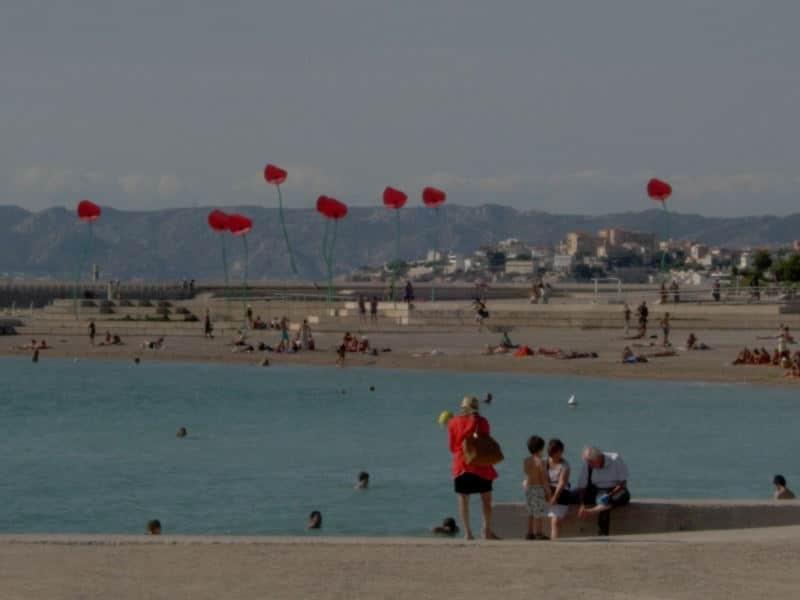 Bouquet de Coquelicots à la fête du vent de Marseille