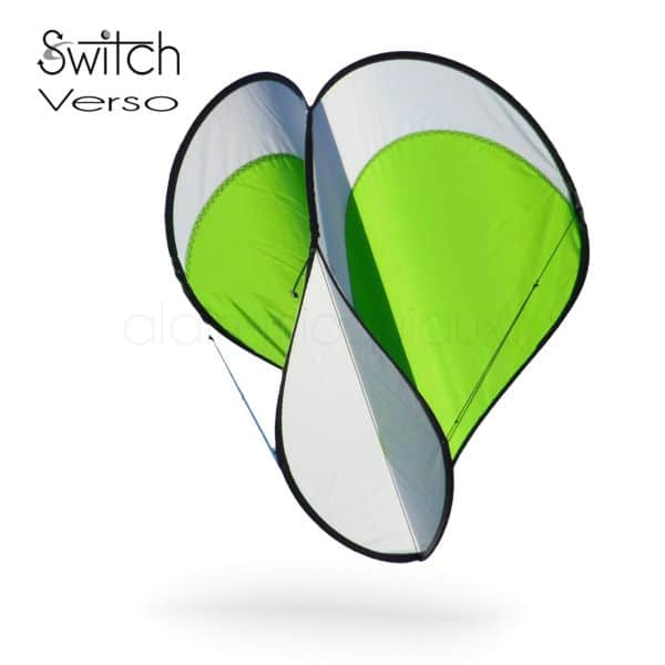 cerf-volant Switch verso vert