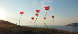 Poppies Kites