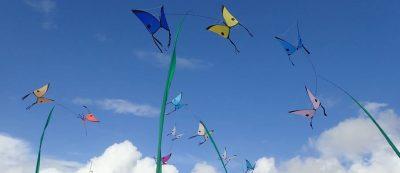 Alain Micquiaux, Poésie et art du cerf-volant, Danse des Papillons